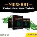 mosehat5-300×250