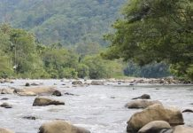 Sungai Mane