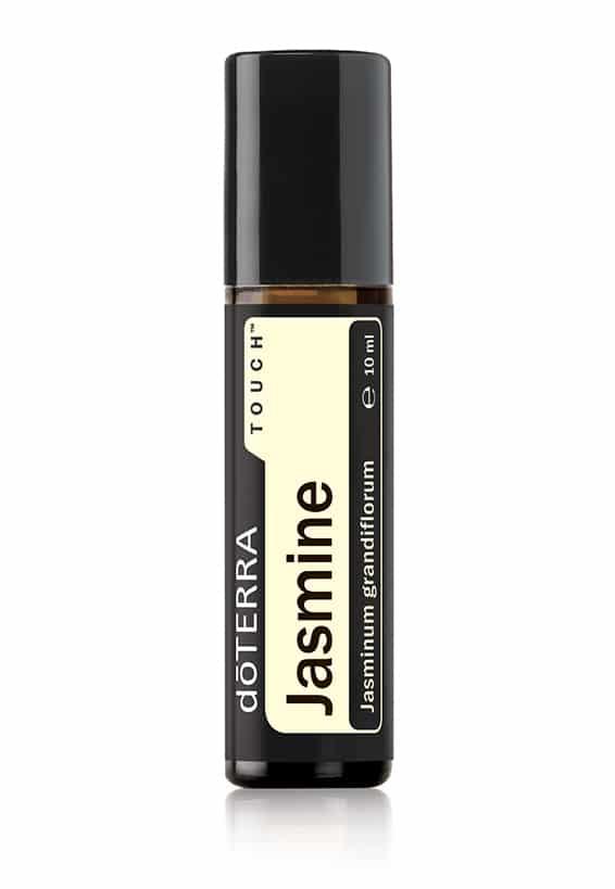 Jasmine Touch® – Jasminum grandiflorum – Jazmín