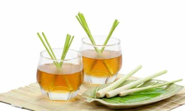 aceite esencial de citronela