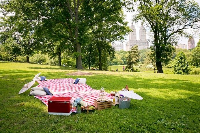 Picnic Wedding Reception In Central Park A Central Park