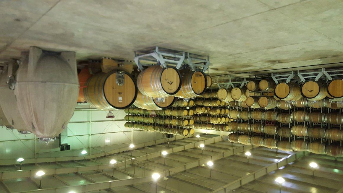 Catena Institute of Wine: La NASA de los vinos