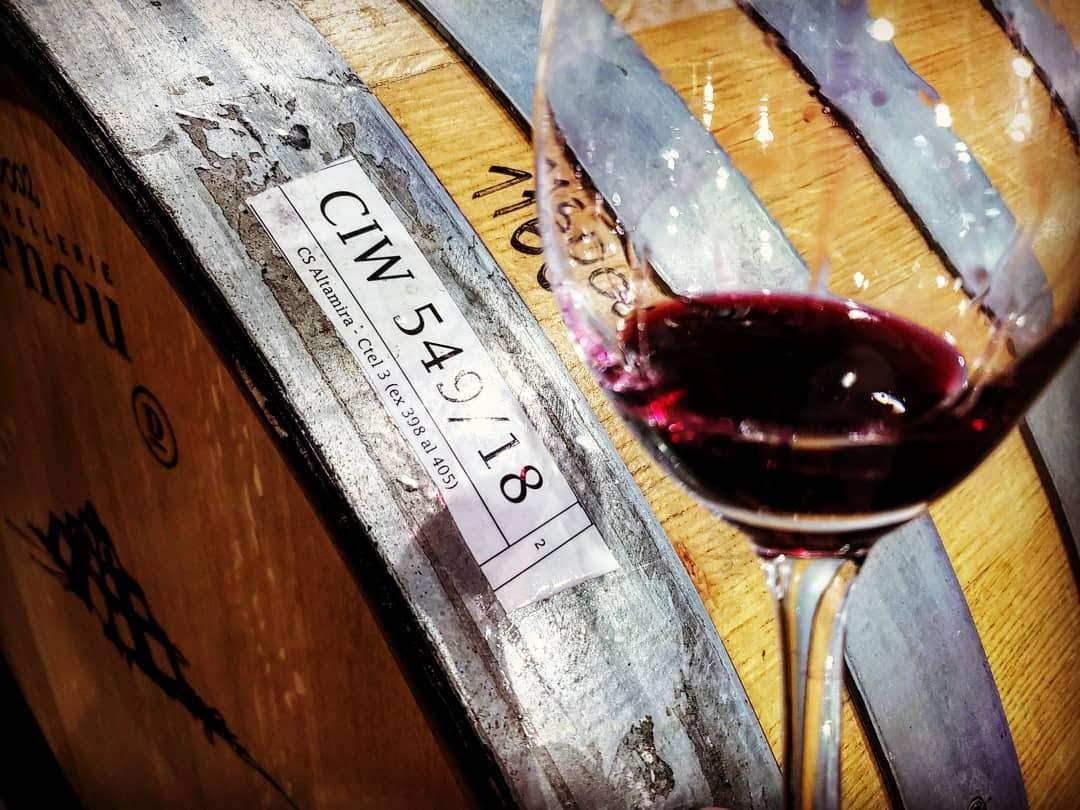 Catena Institute of Wine, la NASA de los vinos 12