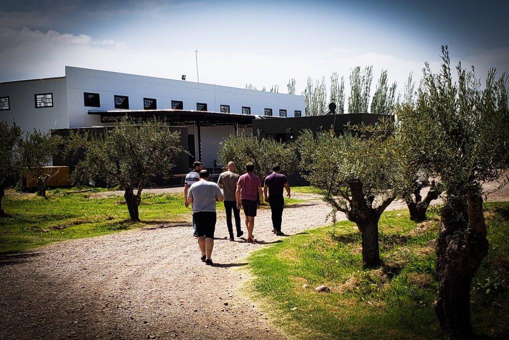 Como armar tu primer viaje a Mendoza con amigos 4