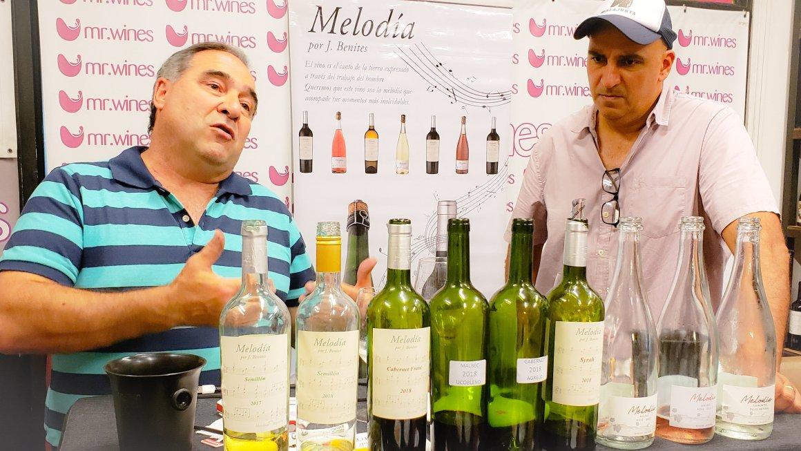 Melodía Wines 1