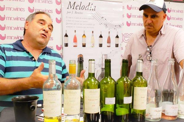 Melodía Wines