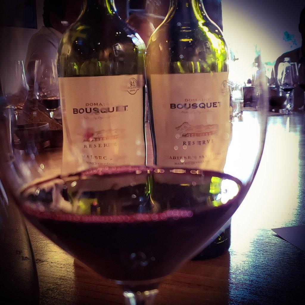 Domaine Bousquet y la búsqueda de vinos orgánicos elegantes 4