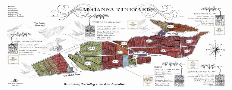 Adrianna Vineyard