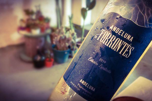 """Andeluna se redefine: """"somos vinos de montaña"""""""