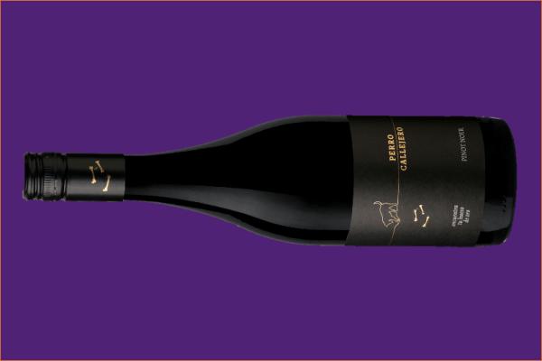 Llega la cosecha 2019 de Perro Callejero Pinot Noir