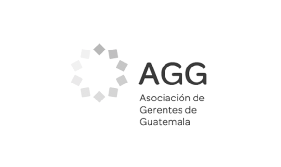 "<p class=""wpb-ea-content-box-title"" style=""text-align: center;""><strong>AGG - Gerente del AÑO 2016- Expansión</strong></p>"