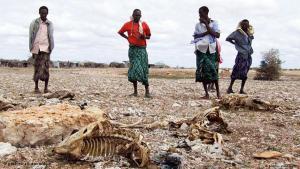 africa pobre