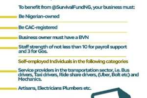 How to apply for the N75 Billion Federal Government Survival Fund