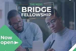 NESG Bridge Fellowship Programme