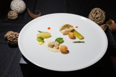 Fish starter dish: oil poach black cod with hazelnut citrus crust, smoked belly croutons, braised leek, celery root puree, glazed cucumber and sea beans, served with Champagne clam sauce