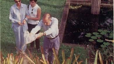 Photo of CINZAS DE RENATO RUSSO EM BARRA BARRA DE GUARATIBA