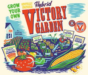 Hybridvictorygarden
