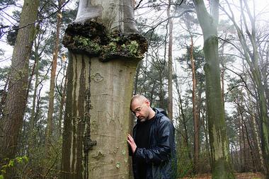 Treefriend