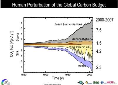 Humanperturbationofcarbonbudget