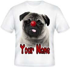My Red Nose4