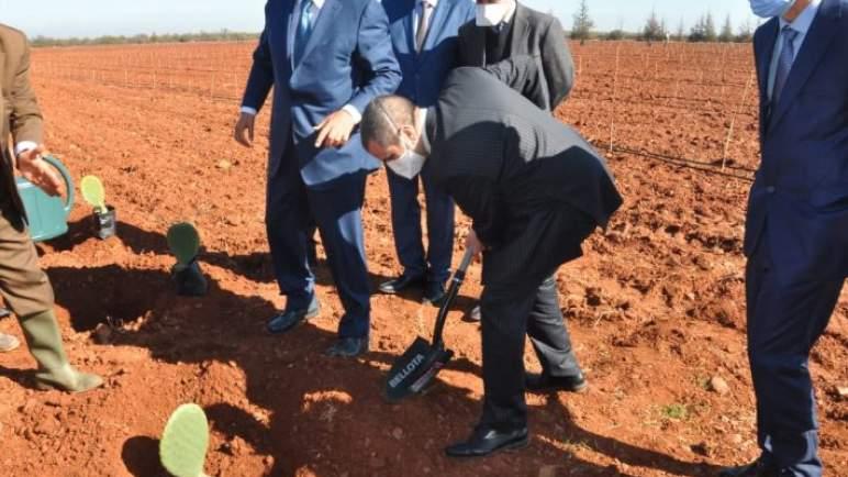 أخنوش يتفقد مشروع زراعة الصبار المقاوم للحشرة القرمزية بإقليم قلعة السراغنة