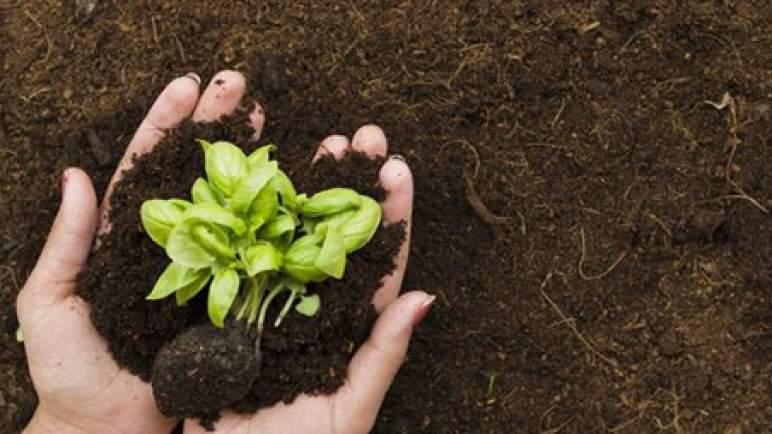 """تقرير """"الفاو"""": تفاقم تلوث التربة وانتشار النفايات يهدد مستقبل إنتاج الأغذية حول العالم"""