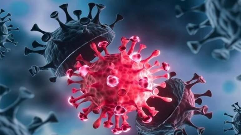 اكتشاف سلالة جديدة من فيروس (كورونا)، لديها طفرات مثيرة للقلق