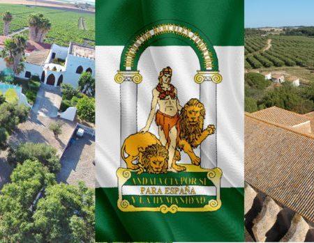 propriétés seville acheter immobilier Espagne 1