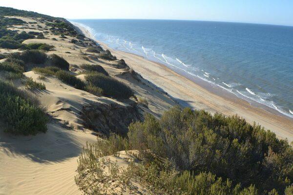 Parc national de Donana Huelva acheter immobilier en espagne