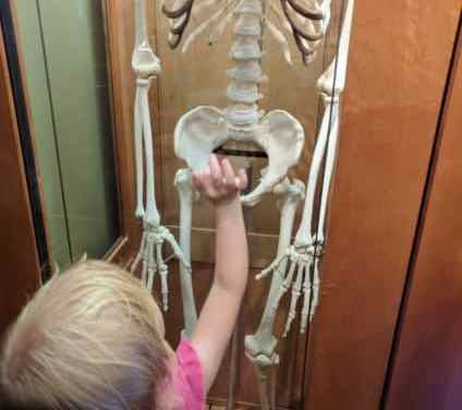 A Rainy Day Visit to the Brooklyn Children's Museum – Dia de los Muertos Edition