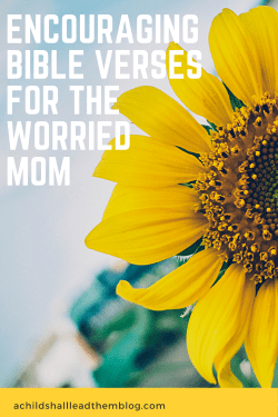 Pinterest pin BIble verses for the worried mom