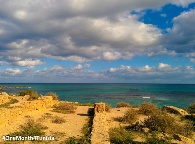 #Post12 #OneMonth4Tunisia لما بدا من عهد اندلس، فى صوتها تغريد تسري وتطوف شادية، وتزيدنى شكرا على شكري Take off your hands on my Earth, Undisputed minds live in Tunisia Place: Sousse | Achraf Aouadi ©
