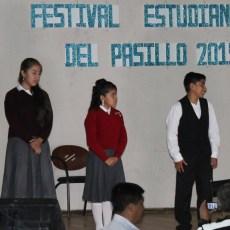 Festival del pasillo 2015