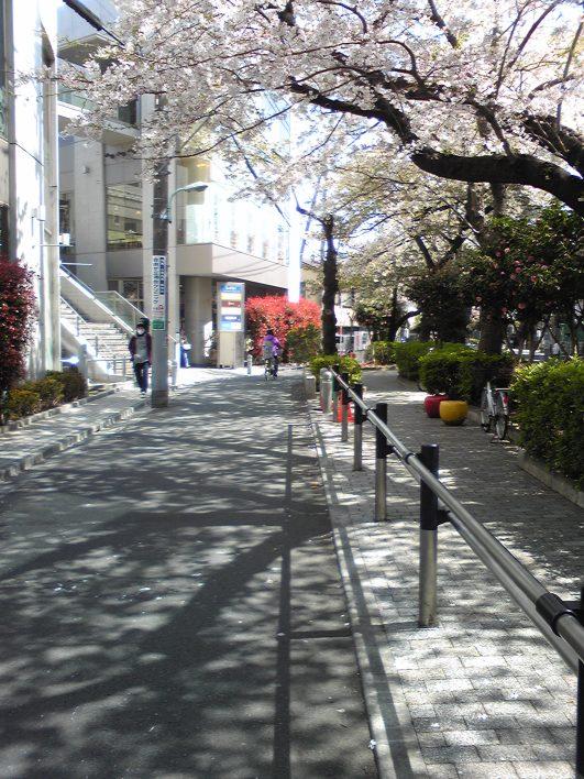 Contoh jalur khusus pejalan kaki (kanan) dan jalur kendaraan (kiri)