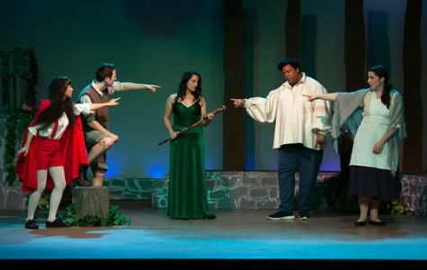 Theater Review: Into the Woods