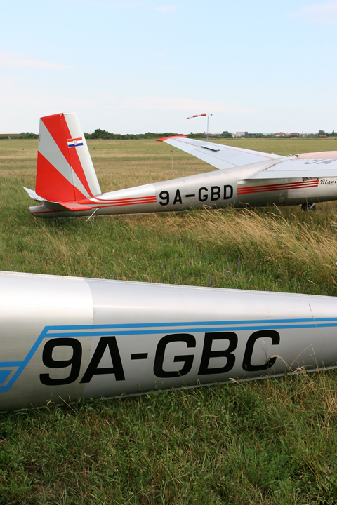 Given the small number of gliders on the Cro register, most have sequential registrations