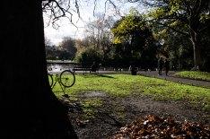 St Stephen's Park