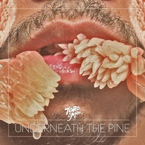 toro y moi-under the pine