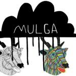 Mulga vs acid stag