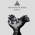 Mountain Bird - The Visitor - acid stag