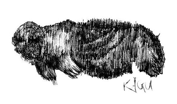 Kagu – Self-titled [EP Review]