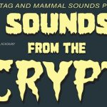 Sounds From The Crypt [Halloween Party] - acid stag