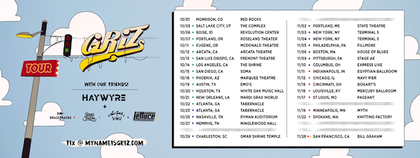 GRIZ - US Tour - acid stag