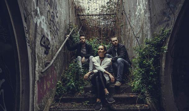 Passerine – 'Undergrowth'