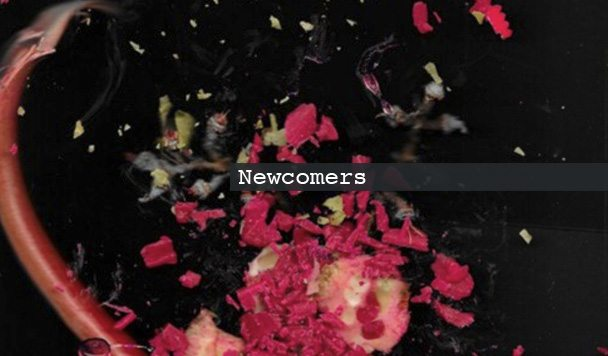 Newcomers: Will Morgan, St. Humain, Jacuzzi Smith & Tape Machines