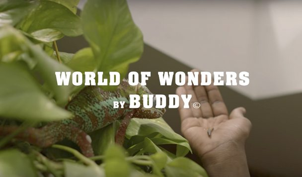 Buddy – 'World of Wonders' [Music Video]