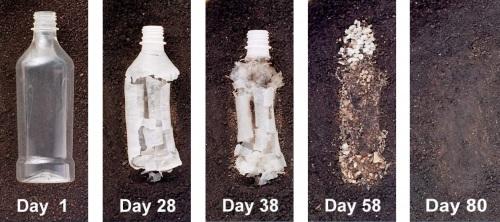bottle_biodegrading
