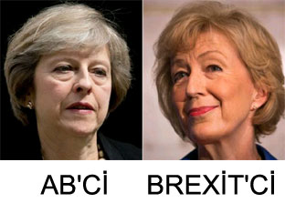Yeni başbakan AB'ci mi Brexit'ci mi?