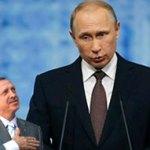 Tayyip Putin