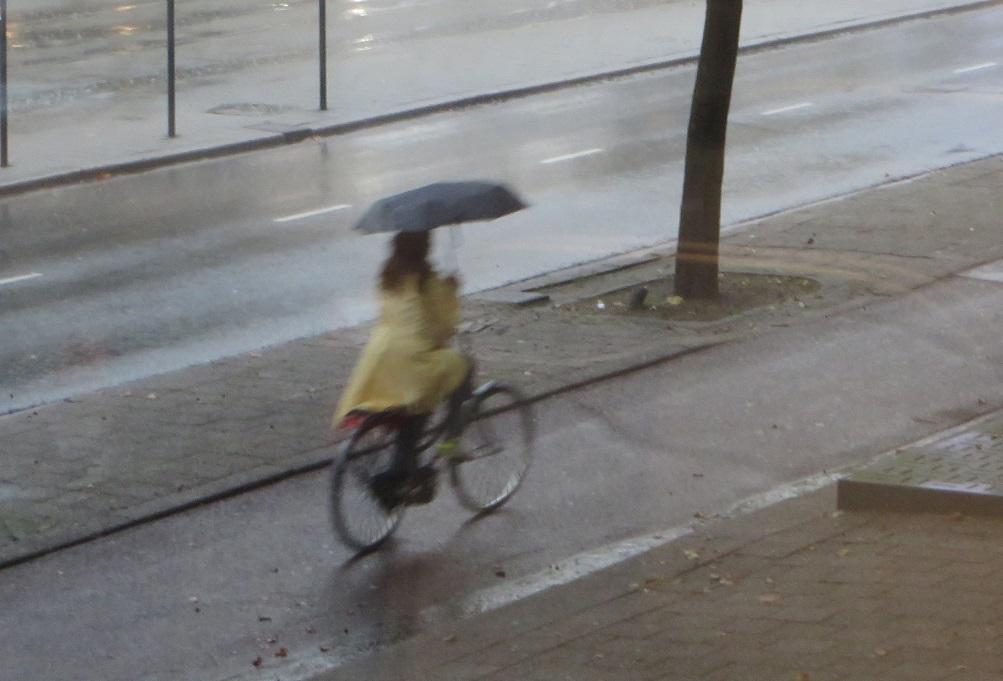 HOLLANDA… Rotterdam'da Bisiklet ve Şemsiye